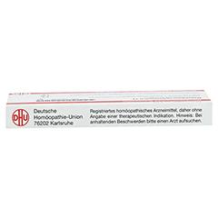 MAGNESIUM CARBONICUM D 12 Ampullen 10x1 Milliliter N1 - Oberseite