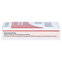 INNOVALL Microbiotic RDS Kapseln 7 Stück - Rechte Seite