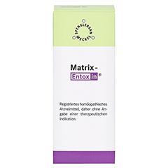 MATRIX-Entoxin Tropfen 50 Milliliter N1 - Vorderseite