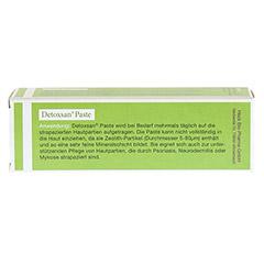 DETOXSAN Paste 50 Gramm - Rückseite