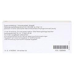 GLANDULAE SUPRARENALES GL D 4 Ampullen 10x1 Milliliter N1 - Rückseite