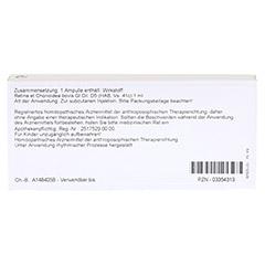 RETINA ET CHORIOIDEA GL D 5 Ampullen 10x1 Milliliter N1 - Rückseite