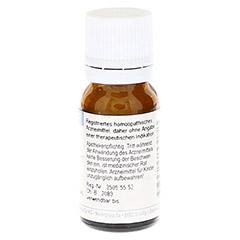 PHOSPHORUS C 30 Globuli 10 Gramm - Rechte Seite