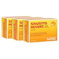 SINUSITIS HEVERT SL Tabletten 300 Stück N3