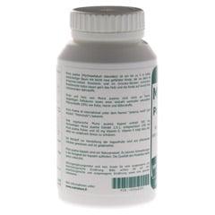 MUIRA PUAMA 500 mg Extrakt Kapseln 200 St�ck - Rechte Seite