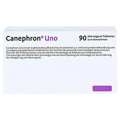 Canephron Uno Dragees 90 Stück - Oberseite