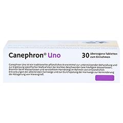 Canephron Uno Dragees 30 Stück - Oberseite