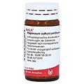 MAGNESIUM SULFURICUM/Ovaria comp.Globuli 20 Gramm N1