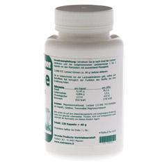 LACTASE 12.000 FCC Enzym Kapseln 120 Stück - Rechte Seite