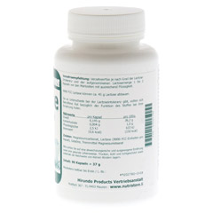LACTASE 9.000 FCC Enzym Kapseln 90 Stück - Rechte Seite