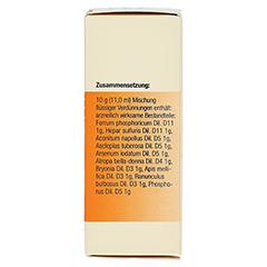 SYNERGON KOMPLEX 48 Arsenicum jodatum N Tropfen 20 Milliliter - Linke Seite