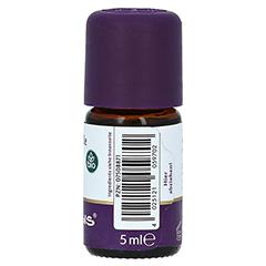 Immortelle Öl Bio 5 Milliliter - Linke Seite