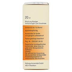 SYNERGON KOMPLEX 48 Arsenicum jodatum N Tropfen 20 Milliliter - Rechte Seite