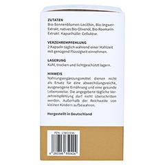 GINGERIN Phytholistic Bio-Ingwer-Extrakt Kapseln 60 Stück - Linke Seite
