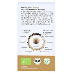 GINGERIN Phytholistic Bio-Ingwer-Extrakt Kapseln 60 Stück - Rückseite