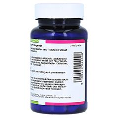 WEISSDORN 120 mg GPH Kapseln 60 Stück - Rechte Seite