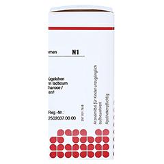 ACIDUM LACTICUM D 30 Globuli 10 Gramm N1 - Rechte Seite