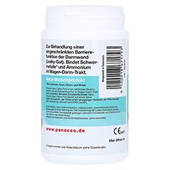 PANACEO Basic-Detox Pure Kapseln 200 Stück - Linke Seite