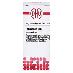 ECHINACEA HAB D 6 Globuli 10 Gramm N1 - Vorderseite