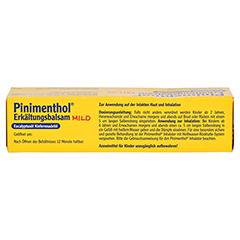 Pinimenthol Erkältungsbalsam mild 20 Gramm N1 - Oberseite