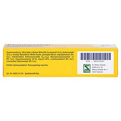 Pinimenthol Erkältungsbalsam mild 20 Gramm N1 - Unterseite