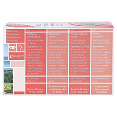 H&S Cranberry Acerolakirsche Filterbeutel 20x2.8 Gramm - Rückseite