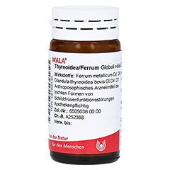 THYREOIDEA/Ferrum Globuli 20 Gramm N1