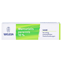MERCURIALIS PERENNIS 10% Salbe 25 Gramm N1 - Vorderseite
