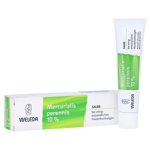 MERCURIALIS PERENNIS 10% Salbe 25 Gramm N1
