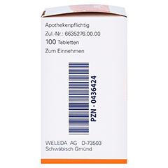 NAUSYN Tabletten 100 Stück N1 - Rechte Seite