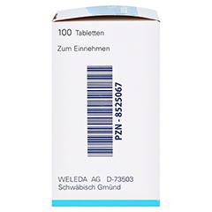 KEPHALODORON 5% Tabletten 100 Stück N1 - Linke Seite