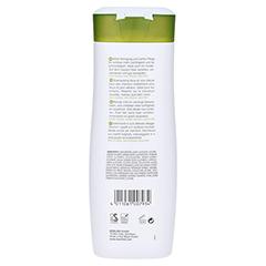 ANNEMARIE BÖRLIND Seide mildes Shampoo 200 Milliliter - Rückseite