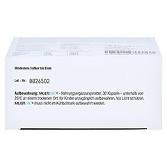 Multilac Synbiotikum Magensaftresistente Kapseln 30 Stück - Unterseite