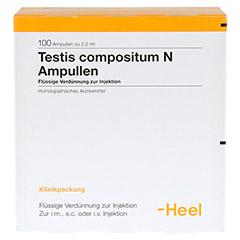 TESTIS COMPOSITUM N Ampullen 100 Stück N3 - Vorderseite