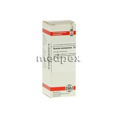 ASARUM EUROPAEUM D 60 Dilution 20 Milliliter N1