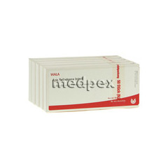 apis-belladonna-inject-ampullen-50x1-milliliter