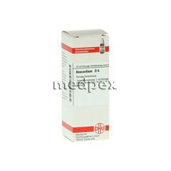 ANACARDIUM D 6 Dilution 20 Milliliter N1