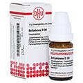 BELLADONNA D 30 Globuli 10 Gramm N1