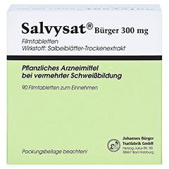 Salvysat Bürger 300mg 90 Stück - Vorderseite