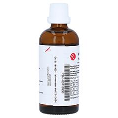 REGENAPLEX Haut-Fluid W 100 Milliliter N2 - Rechte Seite