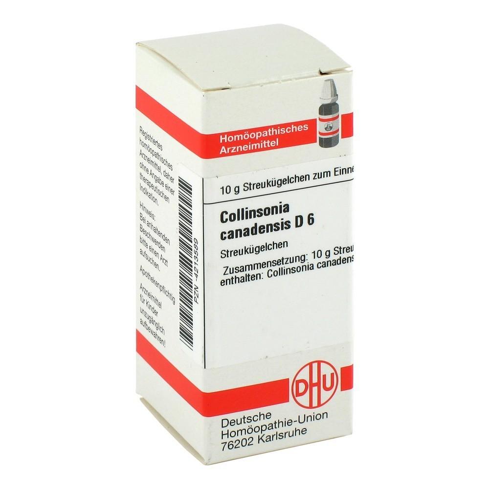 collinsonia-canadensis-d-6-globuli-10-gramm
