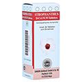 STROPHANTHUS D 4 Sanum Tabletten 80 Stück N1