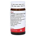 GLANDULAE SUPRARENALES comp.Globuli 20 Gramm N1
