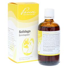 SOLIDAGO SIMILIAPLEX Tropfen 100 Milliliter N2