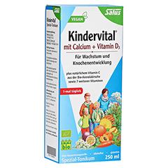 Salus Kindervital mit Calcium + D3 Tonikum Bio 250 Milliliter