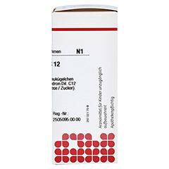 RHUS TOXICODENDRON C 12 Globuli 10 Gramm N1 - Rechte Seite
