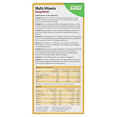 Multi-vitamin Energetikum Salus 500 Milliliter - Rückseite