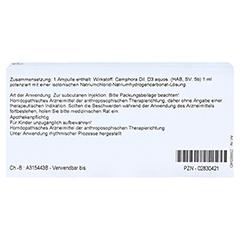 CAMPHORA D 3 Ampullen 10x1 Milliliter N1 - Rückseite