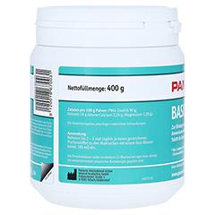 PANACEO Basic-Detox Pulver 400 Gramm - Rückseite