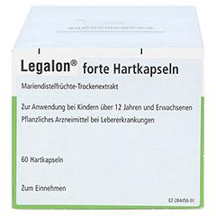 Legalon forte 180 Stück - Rechte Seite